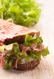 Fresh delicious sandwich Stock Photos
