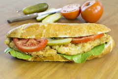 Fresh Delicious Sandwich Made of Chicken, Tomato, Cucumber and Lettuce Stock Image