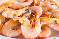 Fresh delicious shrimp Royalty Free Stock Photos