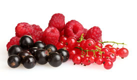 Fresh delicious summer berries Royalty Free Stock Photo