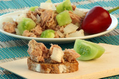 Fresh and delicious tuna salad Royalty Free Stock Images