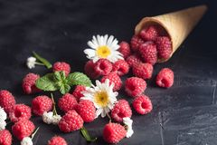 Fresh Deluxe Raspberries in ice cream cone with field flowers on dark wooden background. Fresh Deluxe Raspberries in ice cream cone with field flowers on dark royalty free stock photo