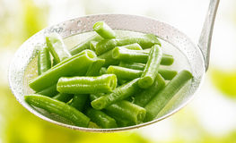 Fresh diced green runner beans in a kitchen ladle. Freshly harvested diced steamed or boiled green runner beans in a kitchen ladle to be served as an royalty free stock images