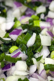 Fresh diced red and green onions Royalty Free Stock Image