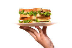 Fresh diet sandwich with salad Royalty Free Stock Images