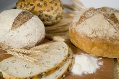 Fresh different kinds of bread with sour and wheat head Royalty Free Stock Photo