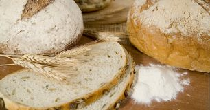Fresh different kinds of bread with sour and wheat head Stock Photography