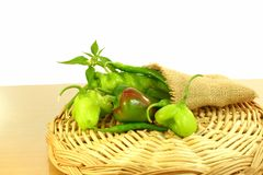 Fresh different type chili peppers Royalty Free Stock Photo