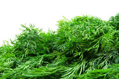Fresh dill. Isolated on white background stock photo