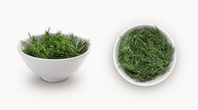 Fresh dill  in a bowl Stock Image