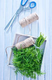Fresh dill Royalty Free Stock Photography