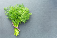 Fresh dill on a dark stone background Royalty Free Stock Photos
