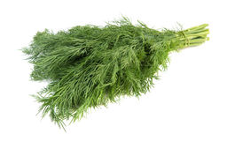Fresh dill. Isolated over white Stock Image