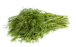 Fresh dill isolated on white. Background Royalty Free Stock Photo