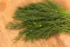 Fresh dill Royalty Free Stock Photo