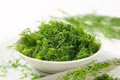 Fresh dill leaves. Bowl of fresh chopped dill leaves Royalty Free Stock Photos