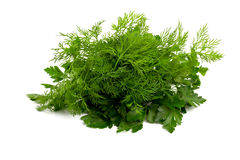 Fresh dill and parsley Stock Photos
