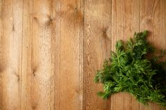 Fresh dill on rustic wooden table.  Royalty Free Stock Photography