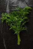 Fresh dill on stone table Stock Image