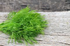 Fresh dill on wooden background Royalty Free Stock Photos