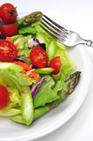 Fresh Dinner Salad Royalty Free Stock Photo
