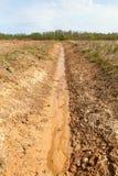 Fresh ditch. Royalty Free Stock Photos