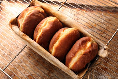 Fresh donuts in bakery mold Royalty Free Stock Photos