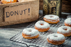 Fresh donuts with powder sugar on cooling rack Royalty Free Stock Photos