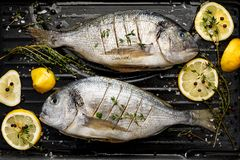 Fresh Dorada fish, sea bream with the addition of spices, herbs and lemon prepared for grilling on the grill barbecue. Top view Stock Image