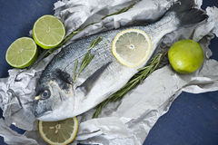 Fresh dorada fish. Fresh shiny dorada  prepared for cooking with lime and rosemary laying on a craft paper in front of old blue wooden table Stock Image
