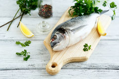 Fresh dorade with parsley and pepper Royalty Free Stock Photos