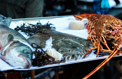 Fresh dorade, plaice and lobster on a platter. Dorade, plaice and lobster, three fresh Mediterranean delicacies on a platter Stock Images