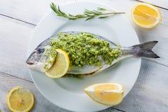 Fresh dorado fish Royalty Free Stock Photo