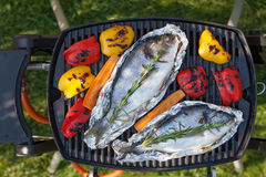Fresh dorado fish and bell pepper grill cooking Stock Photo