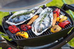 Fresh dorado fish and bell pepper grill cooking Stock Images