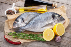 Fresh dorado fish cooking with spices and condiments. On wooden table Stock Photos