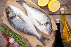 Fresh dorado fish cooking with spices and condiments Stock Images