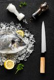 Fresh dorado fish on ice on a black stone table Royalty Free Stock Photos