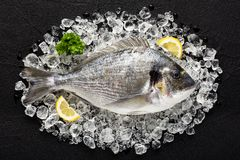 Fresh dorado fish on ice on a black stone table Stock Photo