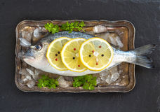 Fresh dorado fish Stock Photo