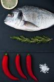 Fresh Dorado fish, lemon, chili pepper, rosemary and salt on a b Royalty Free Stock Image
