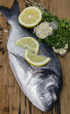 Fresh dorado fish with lemon, prepared for cooking. Stock Images
