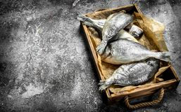 Fresh Dorado fish on an old tray. On a rustic background Royalty Free Stock Photos