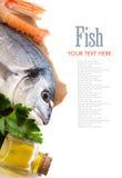 Fresh dorado fish, olive oil and scampi Royalty Free Stock Photo