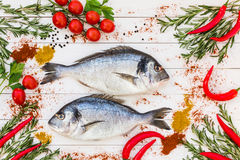 Fresh dorado fish, rosemary, cherry tomatoes, chilly pepper on white wooden table. Top view Stock Photography