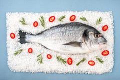 Fresh Dorado Fish with rosemary and chili pepper on a salt recta. Ngular cushion Royalty Free Stock Image