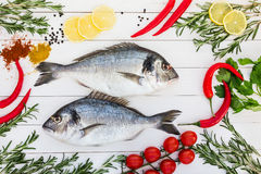 Fresh dorado fish, rosemary, lemon, cherry tomatoes, chilly pepper on white wooden table. Top view Stock Image