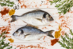Fresh dorado fish, rosemary and spices on white wooden table. Top view. Royalty Free Stock Images