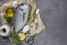 Fresh dorado fish with salt, garlic, rosemary and lemon. Top view Royalty Free Stock Images
