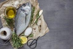 Fresh dorado fish with salt, garlic, rosemary and lemon Royalty Free Stock Images